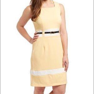 NWT Light Curry & White Square Neck Dress